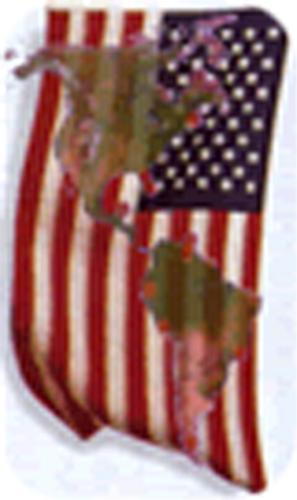 "No se puede mostrar la imagen ""http://www.legrandsoir.info/IMG/png/usa_amerique.png"" porque contiene errores."
