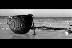 LE DEBARQUEMENT DU 6 JUIN 1944: DU MYTHE D'AUJOURD'HUI A LA REALITE HISTORIQUE (Annie LACROIX-RIZ/legrandsoir.info) dans REFLEXIONS PERSONNELLES arton25845-86f3d