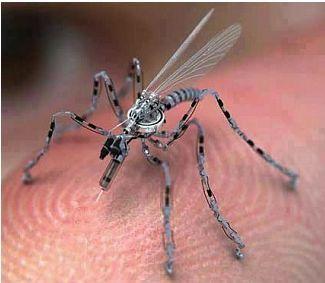 insecte-spy-6412-bfadf