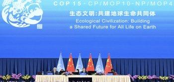 COP15, présidence chinoise : la biodiversité, ce concept anticapitaliste — Guillaume SUING