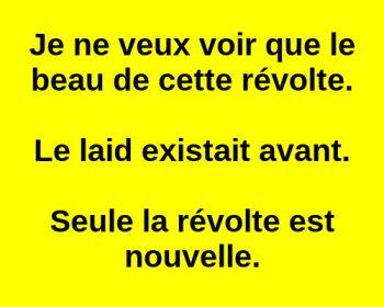 Convergence des luttes. Appel au 5 mai. La Fête à Macron !  - Page 3 Arton34588-3b279
