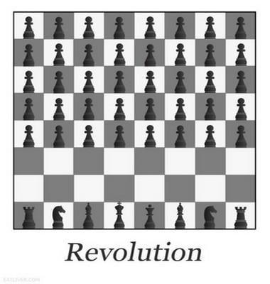 REVOLUTION... dans REFLEXIONS PERSONNELLES 564261_392074527492666_5569929_n-0aa06