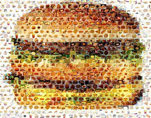 cheeseburger-fast-food-mosaic-paul-van-scott-d6b6e ENVIRONNEMENT
